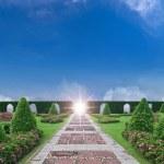 Paradise garden — Stock Photo #10562899