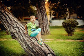 The boy on a tree — Stock Photo