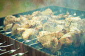 Shish kebab, — Stock Photo