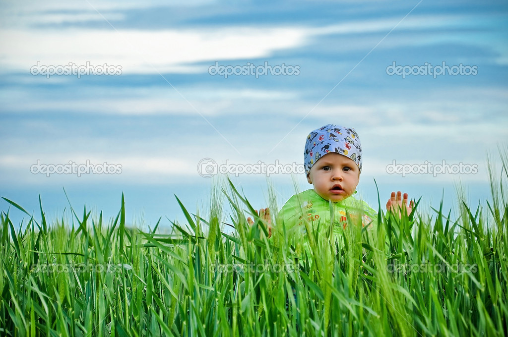 The sky blue green wheat the kid walks across the field — Stock Photo #9824530
