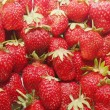 Fresh strawberry — Stock Photo #9897166
