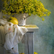 Still life with apples and yellow flowers - Stock Photo