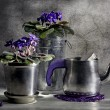 Still life with a tea-pot and violet - Stock Photo