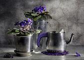 Nature morte avec un pot de thé et violet — Photo