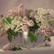 Stock Photo: Still Life with Lilac