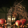 Still Life with Apples and a lantern — Stock Photo