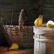 Still Life with Pears and basket - Stock Photo