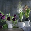 Still life with spring flowers — Stock Photo