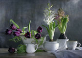 Still life with spring flowers — Stok fotoğraf