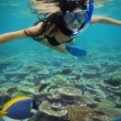 Young woman swimming with fishes on coral reef in blue water — Stock Photo