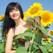 Young woman in the field of sunflowers — Stock Photo