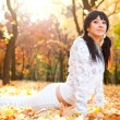 Pretty woman doing yoga exercises in the autumn park - Stock Photo