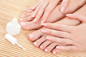 Care for beautiful woman nails — Stock Photo