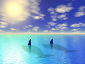 Two whales in blue lagoon — Stock Photo
