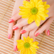 Care for woman hands — Stock Photo