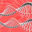 Dna spirals - Stock Photo