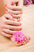 Care for sensuality woman legs and hands — Stock Photo