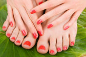 Zorg voor sensualiteit vrouw benen — Stockfoto