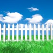 Fresh green grass on blue sunny sky background — Stock Photo