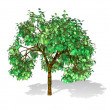 Tree isolated in white — Stock Photo