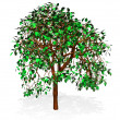 Tree -  