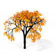 Autumn tree - Foto de Stock