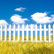Fresh yellow grass on blue sunny sky background - Photo