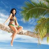 Fashion woman siting upon palm tree — Stock Photo