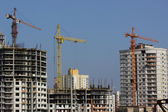 Construction cranes and buildings — Stock Photo