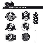 Natural labels set — Stock Vector
