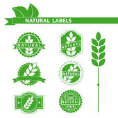 Natural green labels set — Stock Vector