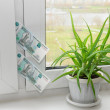 Stock Photo: Banknote in window