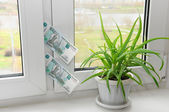 Banknote in the window — Stock Photo