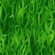 Close-Up Grass - Stock Photo