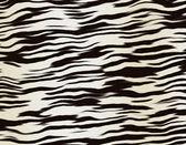 зебра полосами фон — Стоковое фото