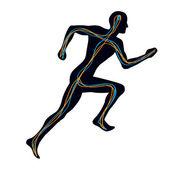 Human Nervous System - Man Running — Stock Vector