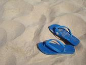 Flip-Flops — Photo