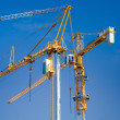 Construction cranes — Stock Photo #9325689