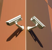 Brown Cameras — Stock Photo