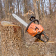 Chainsaw — Stock Photo #9837880