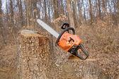 Chainsaw — Stock Photo