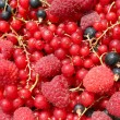 Asorted fruits — Stock Photo