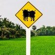 Stock Photo: Guide post of ox cart isolated on orange background