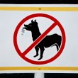 No dog allowed sign — Stock Photo #10497158