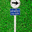 Royalty-Free Stock Photo: The Sign of  to city on green grass background