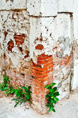 The Old brick wall with a peeling off plaster — Stock Photo