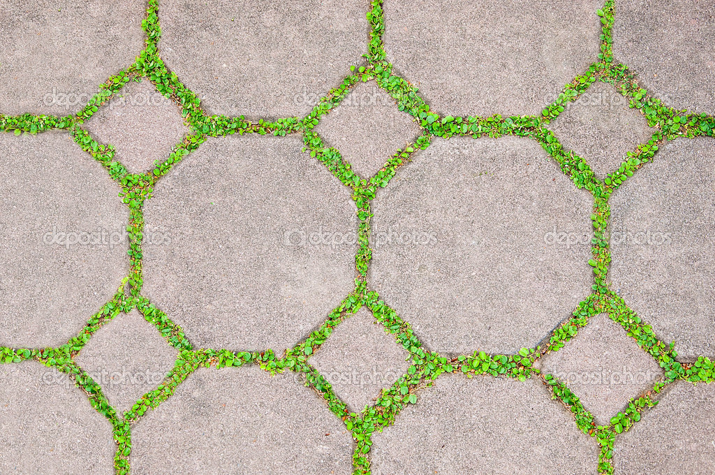 The Cement brick between green grass background — Stock Photo #10551692