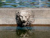 The Head rock lion on pool — Stock Photo