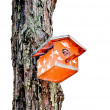 Stock Photo: The Wooden of birdhouse on tree