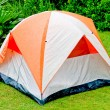 The Orange tent in the forest - Stock Photo